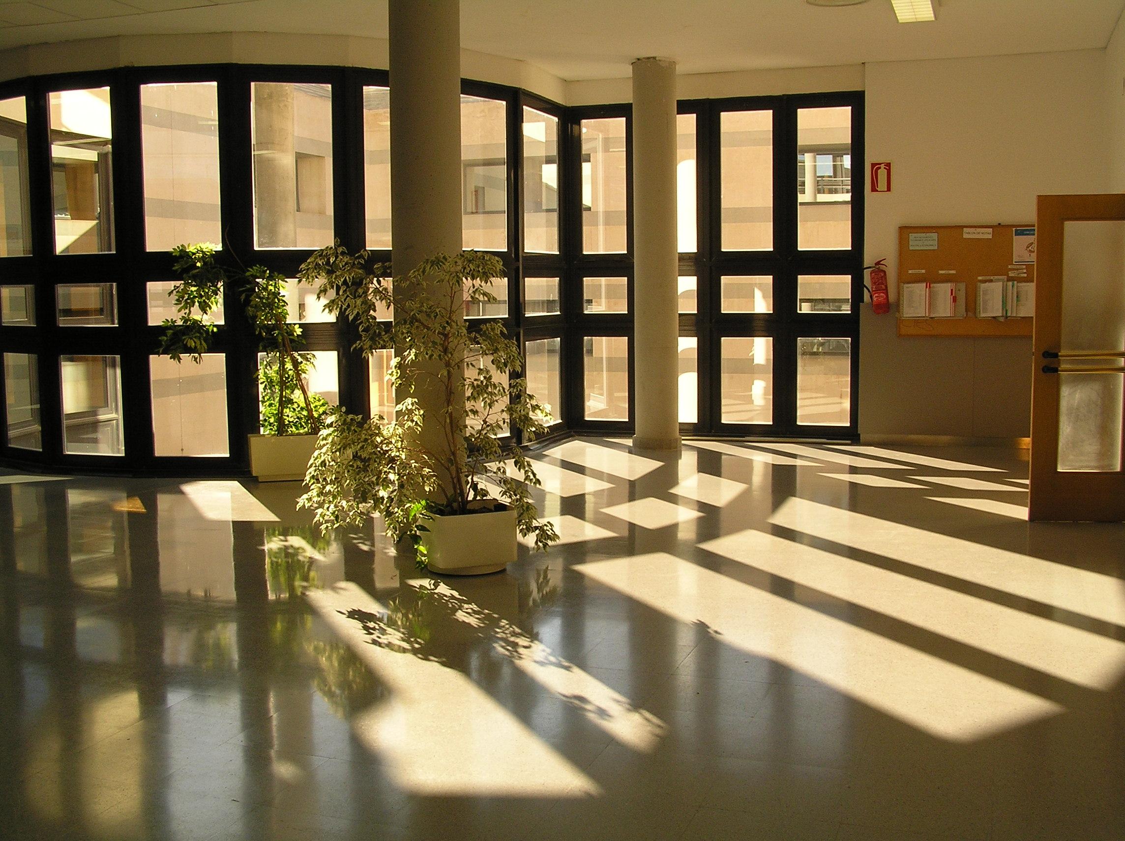 pulizie-uffici-e-vetrate